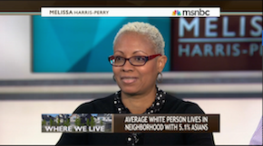 Dorothy Brown on MSNBC
