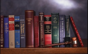 A selection of Emory Law faculty publications